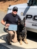 Officer Cloyd and K9 Rudiger touting a Vehicle Search award won at the Placer County K9 Trials